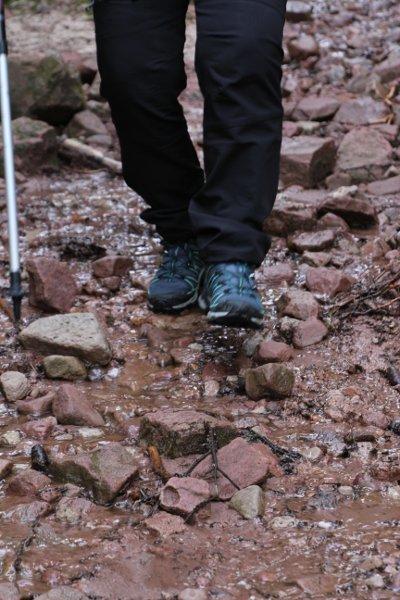 G-Soweit-die-Füße-tragen-H600.JPG